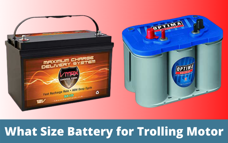 What Size Battery for Trolling Motor