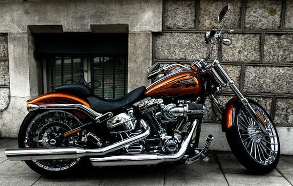 2 Into 1 Exhaust For Harley Bagger