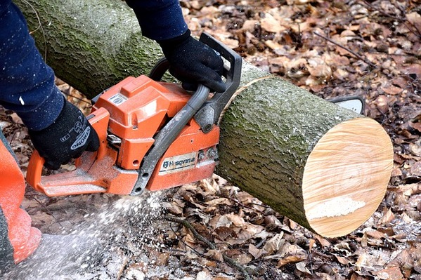 Best Chainsaw in the World